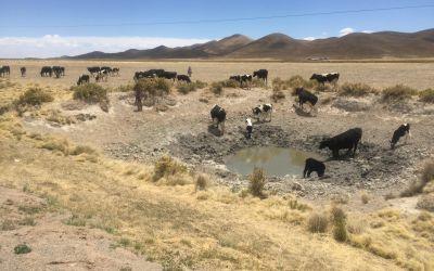 schäden grundwasser rohbau